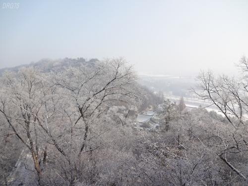 北朝鮮モランボン牡丹峰
