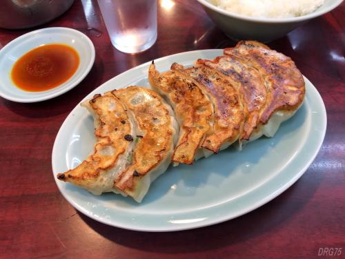 上大岡タンタンの餃子