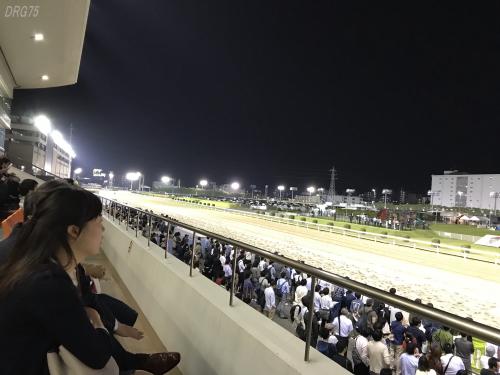 川崎ナイター競馬