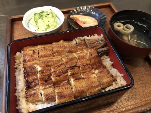 蒲田の若松の関西風鰻